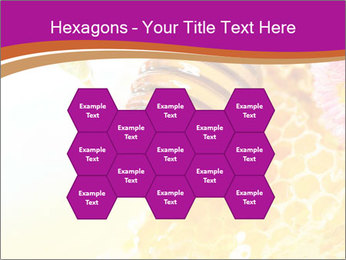 0000060816 PowerPoint Templates - Slide 44