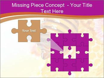 0000060816 PowerPoint Templates - Slide 45