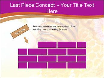 0000060816 PowerPoint Templates - Slide 46