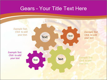 0000060816 PowerPoint Templates - Slide 47