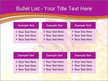 0000060816 PowerPoint Templates - Slide 56