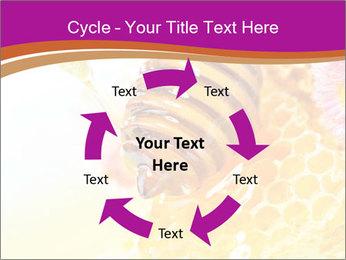0000060816 PowerPoint Templates - Slide 62