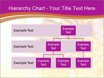 0000060816 PowerPoint Templates - Slide 67