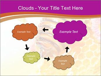 0000060816 PowerPoint Templates - Slide 72