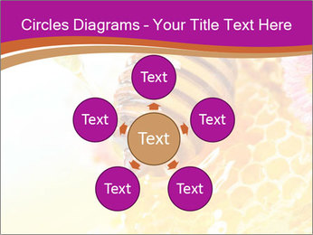 0000060816 PowerPoint Template - Slide 78