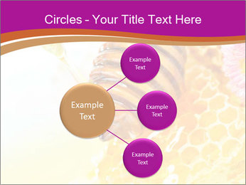0000060816 PowerPoint Templates - Slide 79