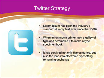 0000060816 PowerPoint Template - Slide 9