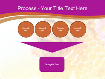 0000060816 PowerPoint Template - Slide 93
