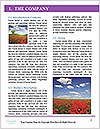 0000060820 Word Templates - Page 3