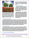 0000060820 Word Templates - Page 4