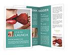 0000060824 Brochure Templates