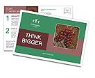 0000060825 Postcard Templates