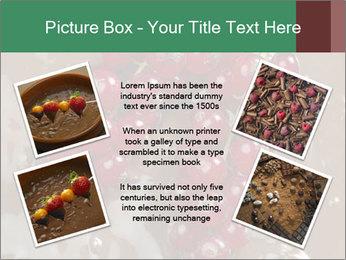 0000060825 PowerPoint Templates - Slide 24