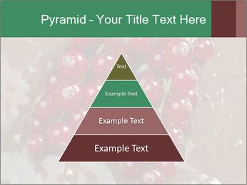 0000060825 PowerPoint Templates - Slide 30