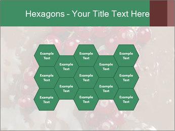 0000060825 PowerPoint Templates - Slide 44