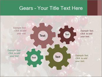 0000060825 PowerPoint Templates - Slide 47