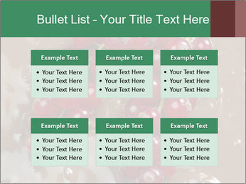 0000060825 PowerPoint Templates - Slide 56
