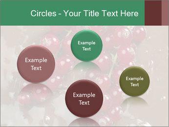 0000060825 PowerPoint Templates - Slide 77