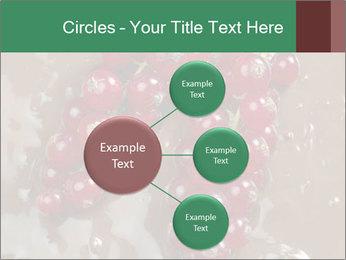 0000060825 PowerPoint Templates - Slide 79