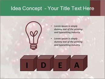 0000060825 PowerPoint Templates - Slide 80