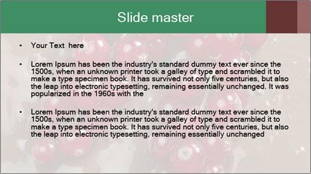 0000060825 PowerPoint Template - Slide 2