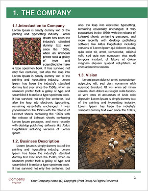 0000060825 Word Template - Page 3