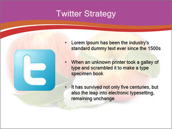 0000060826 PowerPoint Templates - Slide 9