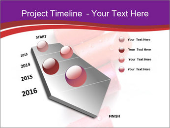0000060827 PowerPoint Template - Slide 26