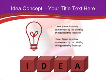 0000060827 PowerPoint Template - Slide 80