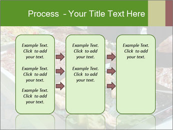 0000060828 PowerPoint Templates - Slide 86