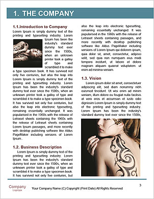 0000060830 Word Template - Page 3