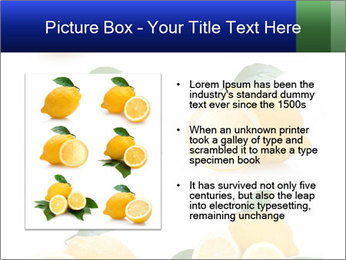 0000060833 PowerPoint Template - Slide 13