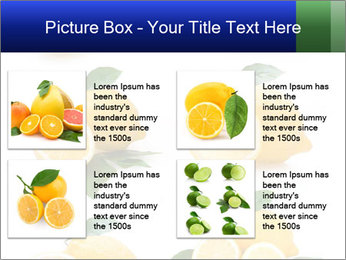 0000060833 PowerPoint Template - Slide 14