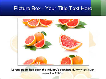 0000060833 PowerPoint Template - Slide 15