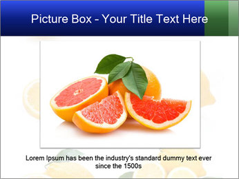 0000060833 PowerPoint Template - Slide 16