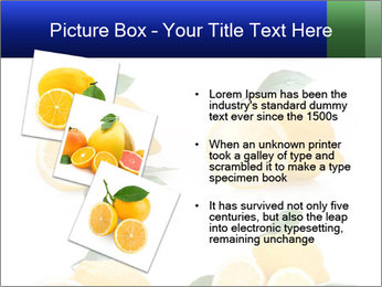 0000060833 PowerPoint Template - Slide 17
