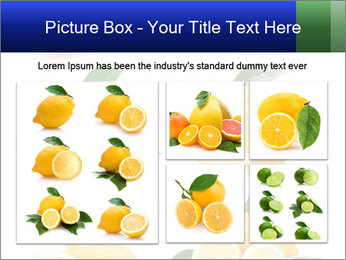 0000060833 PowerPoint Template - Slide 19