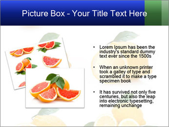 0000060833 PowerPoint Template - Slide 20