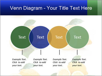 0000060833 PowerPoint Template - Slide 32