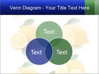 0000060833 PowerPoint Template - Slide 33
