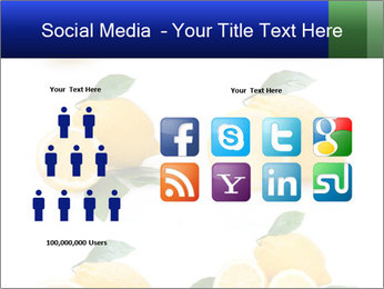0000060833 PowerPoint Template - Slide 5