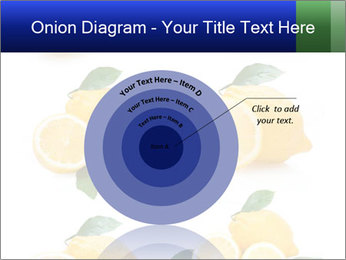 0000060833 PowerPoint Template - Slide 61