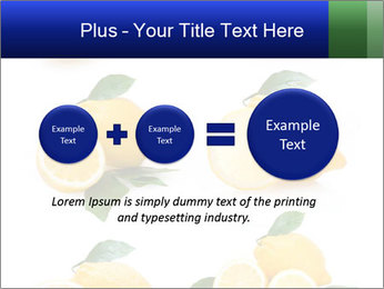 0000060833 PowerPoint Template - Slide 75