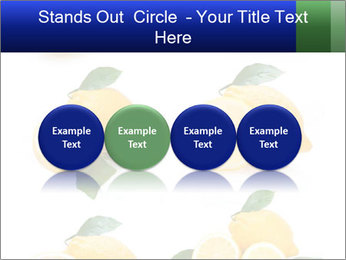 0000060833 PowerPoint Template - Slide 76