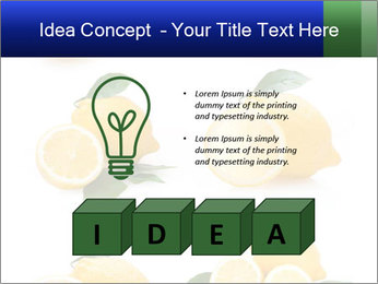 0000060833 PowerPoint Template - Slide 80