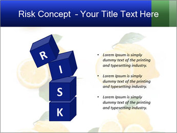 0000060833 PowerPoint Template - Slide 81