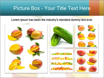 0000060834 PowerPoint Template - Slide 19