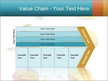 0000060834 PowerPoint Templates - Slide 27