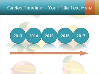 0000060834 PowerPoint Templates - Slide 29
