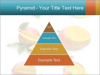 0000060834 PowerPoint Templates - Slide 30